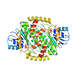 Molmil generated image of 1fdu