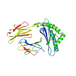Molmil generated image of 1ffn