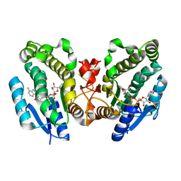 Molmil generated image of 1fk8