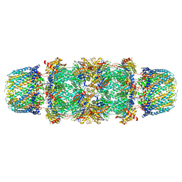 Molmil generated image of 1fnt