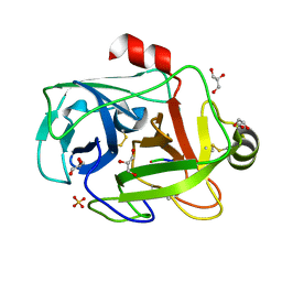 Molmil generated image of 1fy4