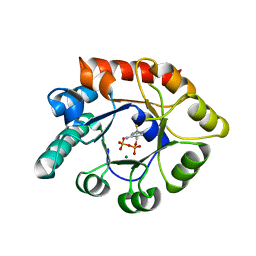 Molmil generated image of 1g4p