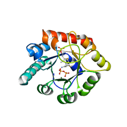 Molmil generated image of 1g4t