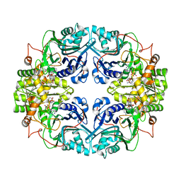 Molmil generated image of 1gph