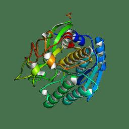 Molmil generated image of 1gtj