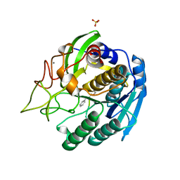 Molmil generated image of 1gtl
