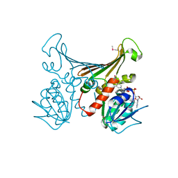 Molmil generated image of 1h2h