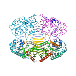 Molmil generated image of 1h6c