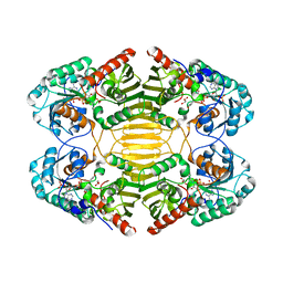 Molmil generated image of 1h6d