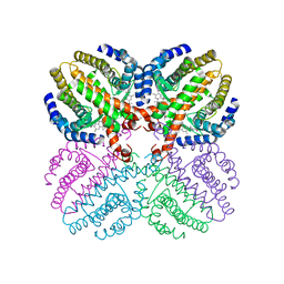 Molmil generated image of 1h9u
