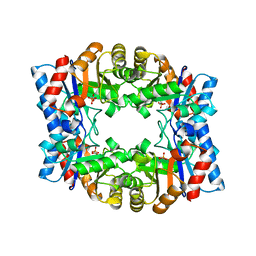 Molmil generated image of 1hg3