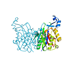 Molmil generated image of 1hnk