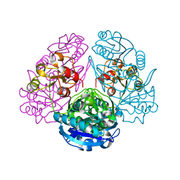 Molmil generated image of 1ho3