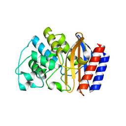 Molmil generated image of 1htz
