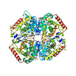 Molmil generated image of 1i10
