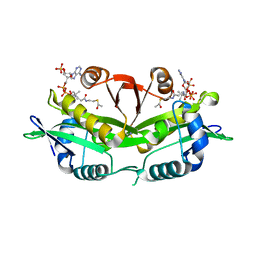 Molmil generated image of 1i12