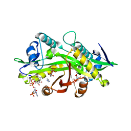 Molmil generated image of 1i1d