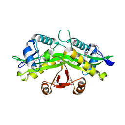 Molmil generated image of 1i21
