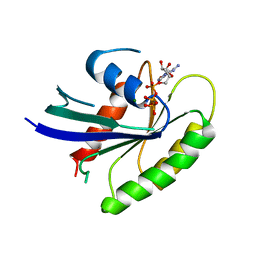 Molmil generated image of 1iaq