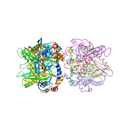 Molmil generated image of 1ibt
