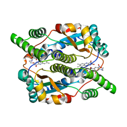 Molmil generated image of 1idt