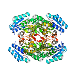 Molmil generated image of 1iy8