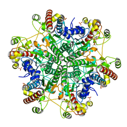 Molmil generated image of 1j2t