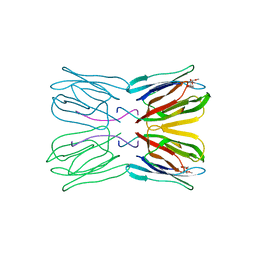 Molmil generated image of 1jac
