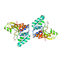 Molmil generated image of 1jkx