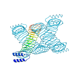 Molmil generated image of 1jl5