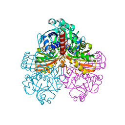 Molmil generated image of 1jn0