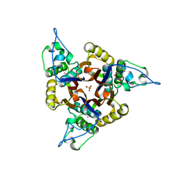 Molmil generated image of 1jn1