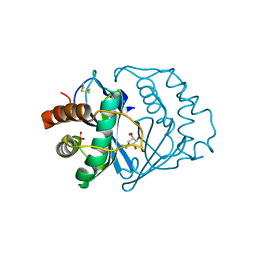Molmil generated image of 1jvi
