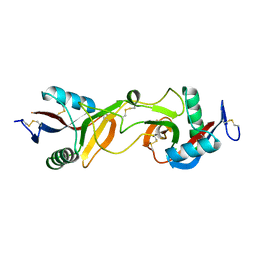 Molmil generated image of 1jwi