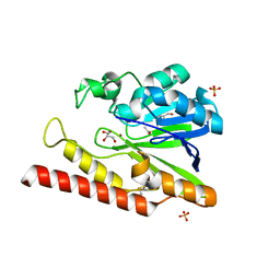 Molmil generated image of 1k07