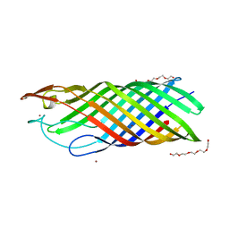 Molmil generated image of 1k24
