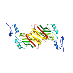 Molmil generated image of 1k2f