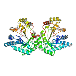 Molmil generated image of 1k8c