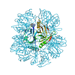 Molmil generated image of 1knf