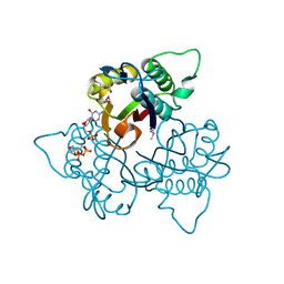 Molmil generated image of 1knj