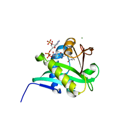 Molmil generated image of 1kuv