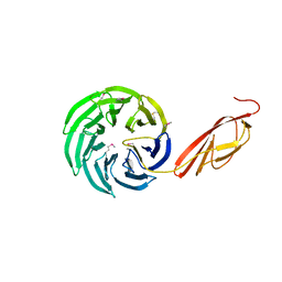 Molmil generated image of 1l0q