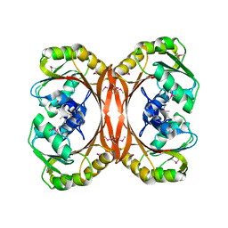 Molmil generated image of 1l3b