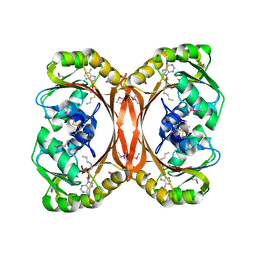 Molmil generated image of 1l3i