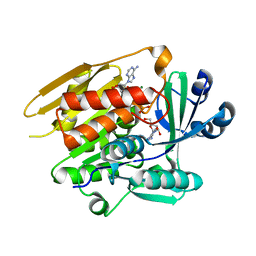 Molmil generated image of 1lii
