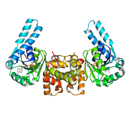 Molmil generated image of 1lsj