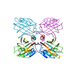 Molmil generated image of 1lu2