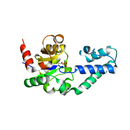Molmil generated image of 1lvh