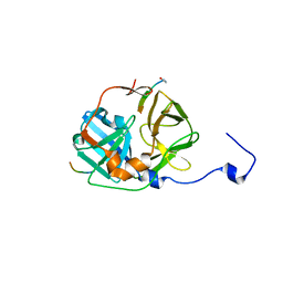 Molmil generated image of 1lvm