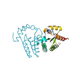 Molmil generated image of 1ly1
